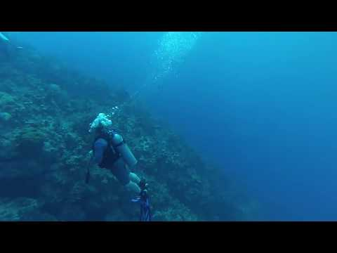Cayman Trench Diving
