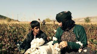 Bol Ödüllü Kısa Film Nar Zamanı / Pomegranate Time Short Film Award Winning Film