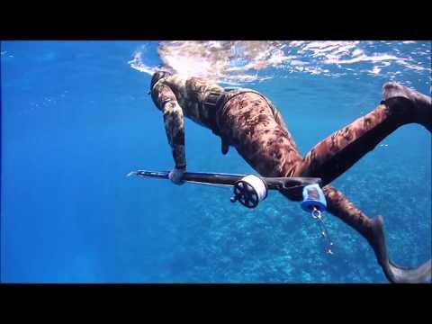 spearfishing Red sea in Saudi Arabia