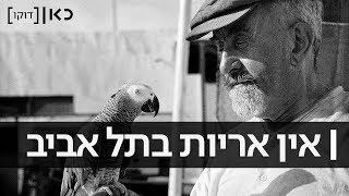 כאן דוקו | אין אריות בתל אביב