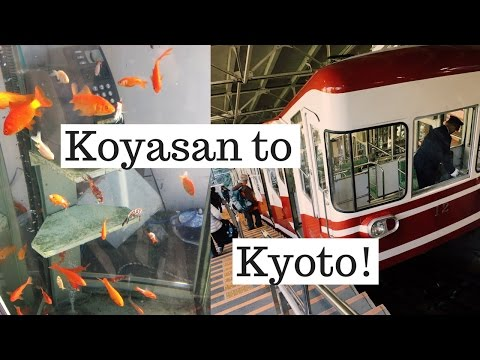 From Okunoin, Koyasan to Kyoto | Japan Vlog (Kansai Thru Pass)