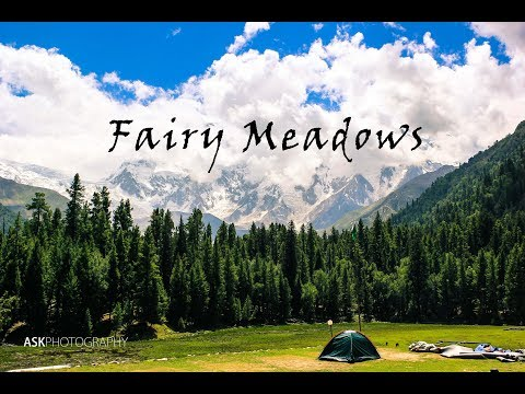 Fairy Meadows Trekking | Pakistan Tour 2015 [Complete Guide] - Travel Vlog