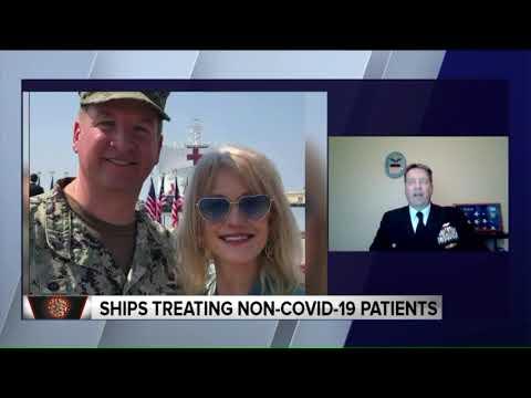 Navy Captain Details Planning, Distribution For Hospital Ships