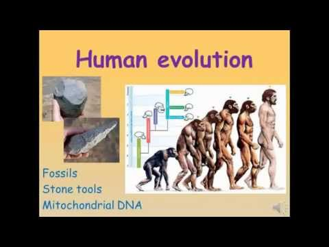 an analysis of the biology and evolution of humans Evolutionary functional analysis is a  by many in the biology of human behavior.