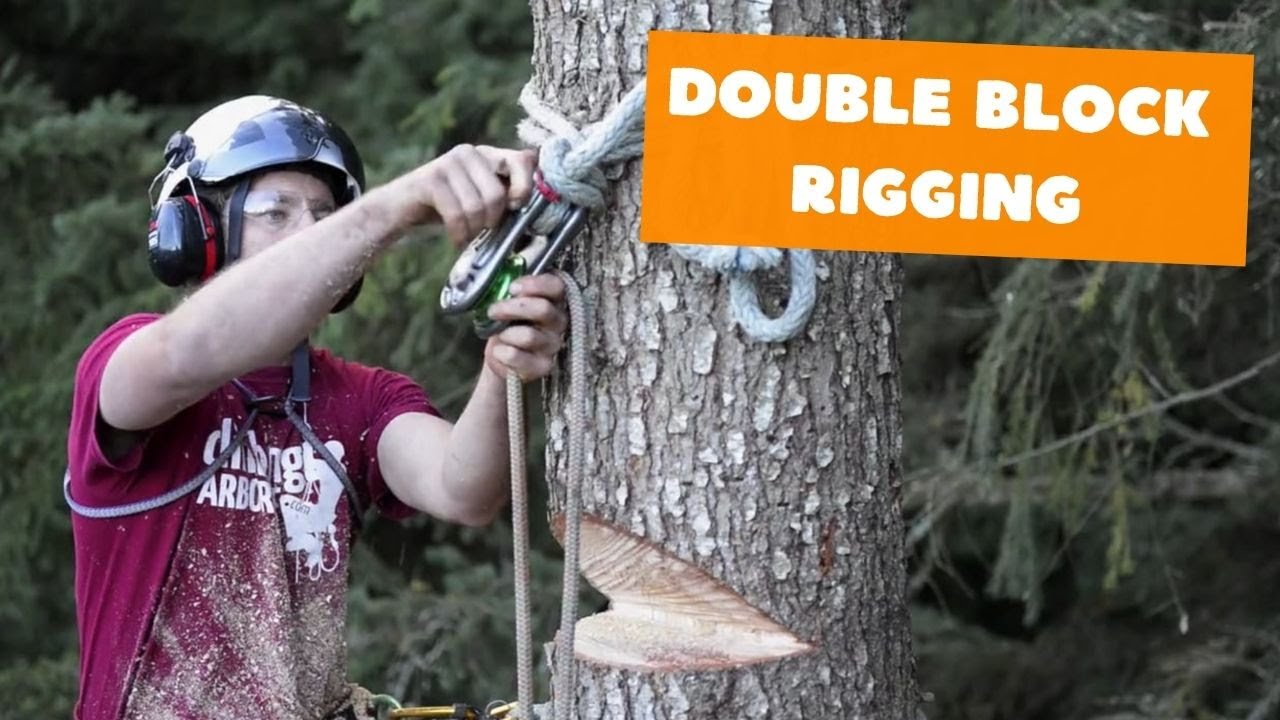 Double Block Rigging Tree Rigging Systems Youtube