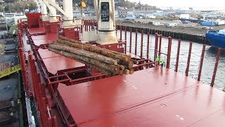 Loading timber onto a cargo ship