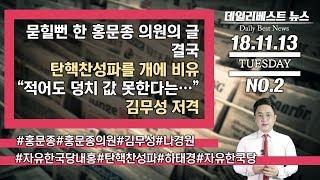 """묻힐 뻔 한 홍문종의원을 글…탄핵찬성파를 개에 비유 /""""적어도 덩치 값 못한다는…"""" 김무성 저격"""