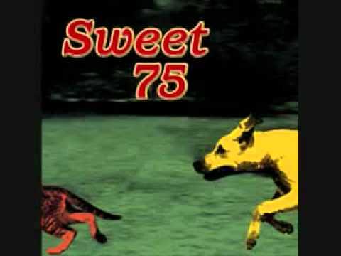 Sweet 75- Oral Health.flv