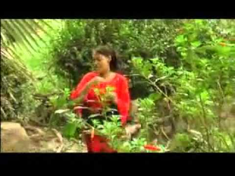 Akka Muses - Like Moses BY BILISEE KARRASAA