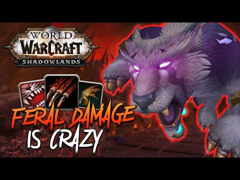 FERAL BURST DAMAGE IS CRAZY! - Feral Druid PvP - Shadowlands Beta (World of Warcraft: Shadowlands)