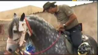 Badou Zaki : Star sur aljazeera sport -Part13-