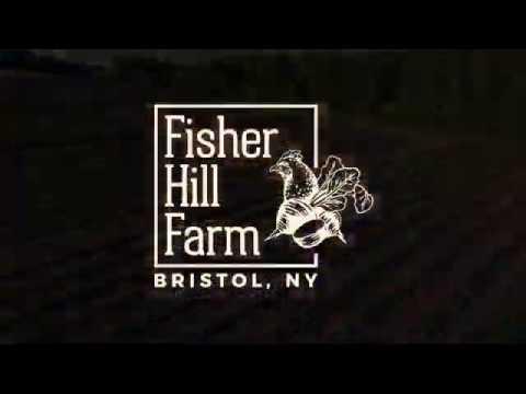 Fisher Hill Farm in Bristol, New York