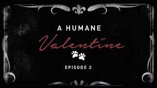 A Humane Valentine- Episode 02, With Tanya & Nikhil