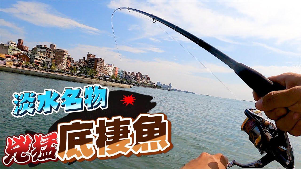 淡水名產接力!就在瓜瓜大咬的隔天,竟然跑出大量的兇猛底棲魚?!