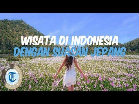 7-tempat-wisata-di-indonesia-yang-punya-nuansa-jepang,-coba-kunjungi-taman-jinja