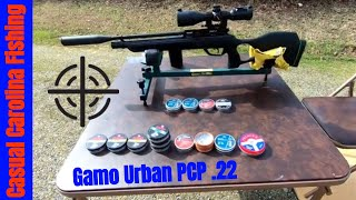 Fx wildcat pesting and gamo urban out to 70 yards