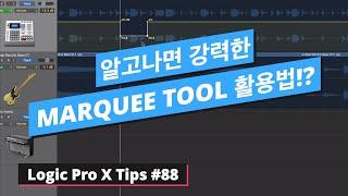 로직을 편하게 활용해주는 필수 기능 마키 툴 200% 활용하는 방법 / Marquee Tool