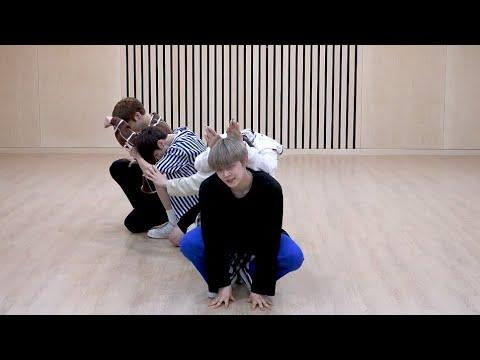[txt---cat-&-dog]-dance-practice-mirrored