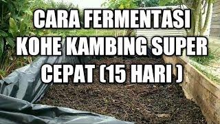 Download lagu #CARA  FERMENTASI KOHE KAMBING SUPER CEPAT