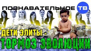Дети элиты - тормоз эволюции (Познавательное ТВ, Сергей Савельев)