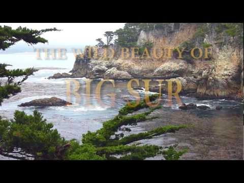 The Wild Beauty of Big Sur