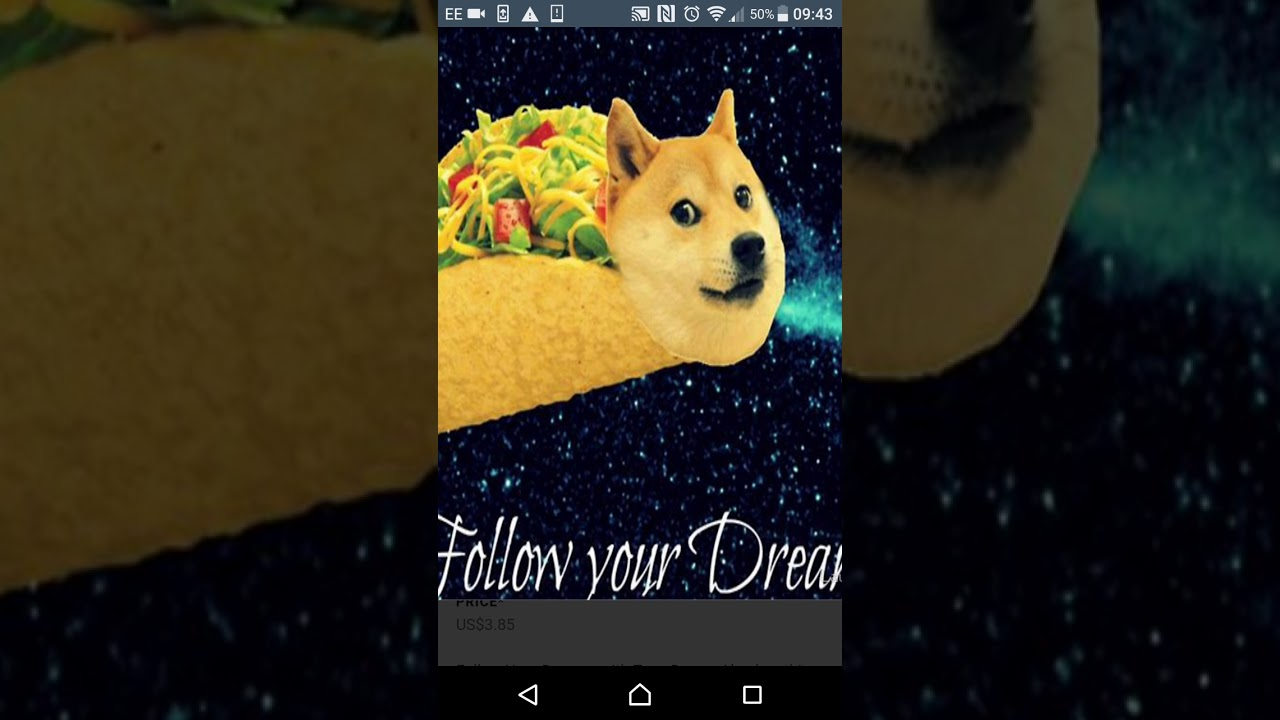 Ray 619 Is A Doge In A Taco A Agreement With Its Ag Again