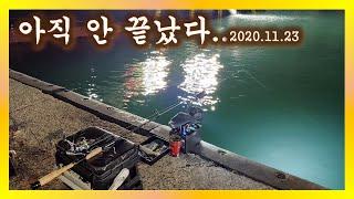 [여수갑오징어] 배스낚시대를 고집하는 이유....202…