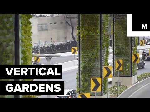 Mexico City Turns Highways Into Stunning Vertical Gardens to Improve Air Pollution