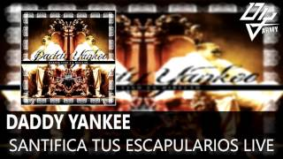 Video Daddy Yankee - Santifica Tus Escapularios Live - Barrio Fino En Directo download MP3, 3GP, MP4, WEBM, AVI, FLV Juni 2018