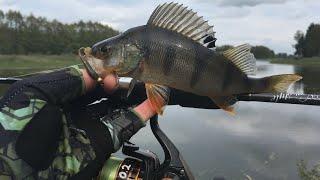 Ловля ОКУНЯ на МИКРУХУ Рыбалка на спиннинг летом Микро джиг окунь на каждой проводке