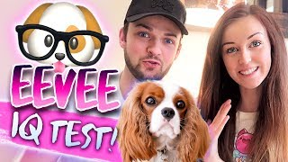 🐶🤓TESTING OUR DOG