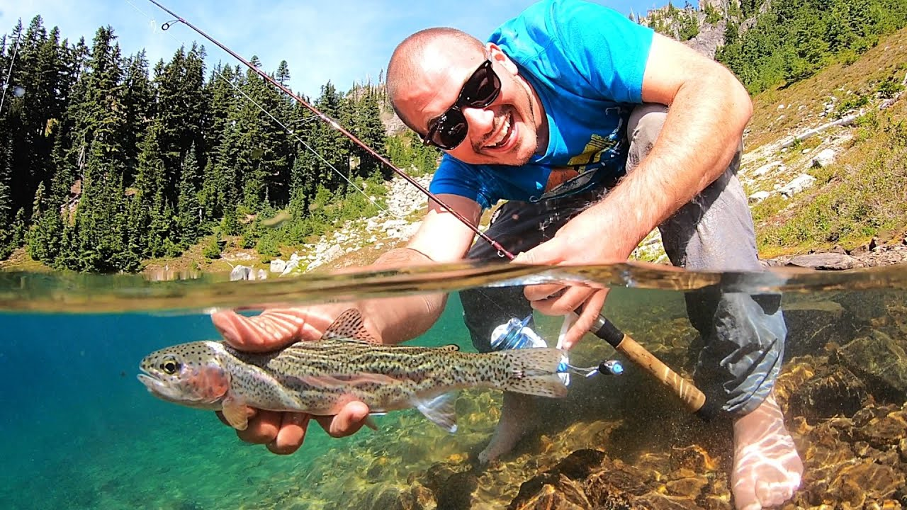Download MOUNTAIN TROUT Fishing in PARADISE (Catch & Cook) AquaView