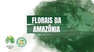 Florais da Amazônia | Cursos Intermediários
