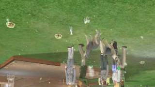 Sims2 animaux et cie