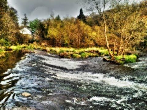 Edinburgh - Water of Leith
