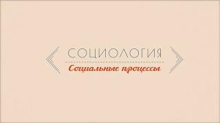 Лекция 1.5   Социальные процессы   Марина Арканникова   Лекториум