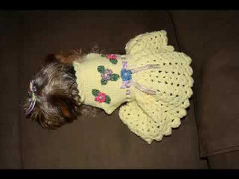 Dog Clothes Dog Sweater Youtube