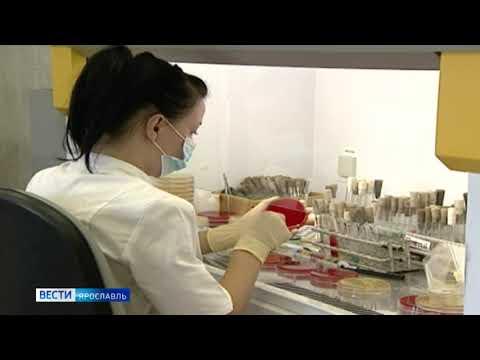 Все результаты анализов на коронавирус, отправленных из Ярославля, отрицательные