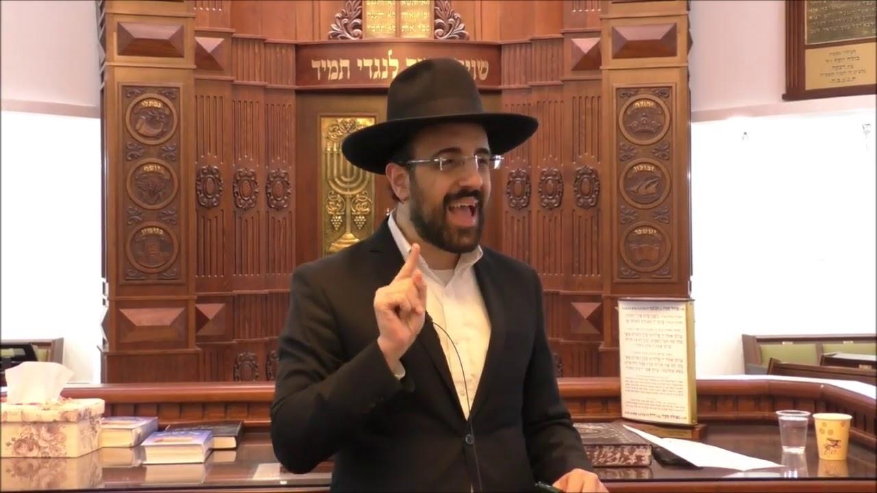 הרב מאיר אליהו שליטא   דור תהפוכות, משכן יהודה   ויקרא תשעט