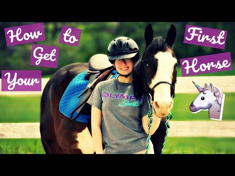 Tips for Leasing or Buying Your First Horse    Eastern Equestrian   