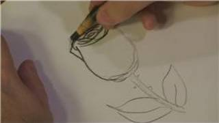 Drawing Plants & Flowers : How to Draw Easy Roses