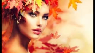 Mehdi - Falling Leaves