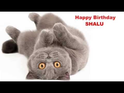 Happy Birthday Shalu (24/06/2015)