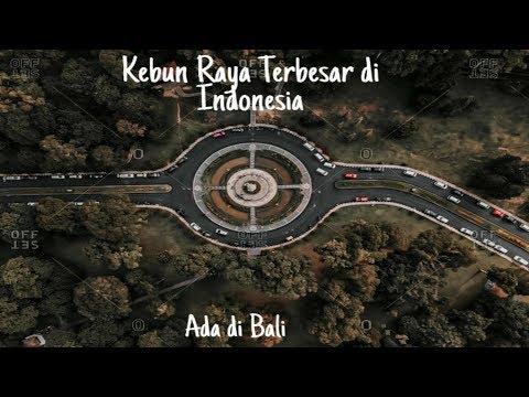 kebun-terbesar-di-indonesia-ada-di-bali