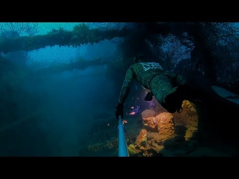 Wreck le togo -52M freediving