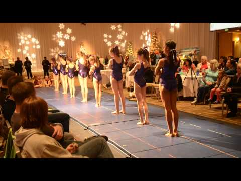 Holland gymnastics exhibition at the Westin