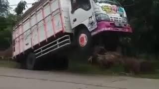 Download truk muat kayu standing