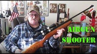 Airgun Shooter EP5A-Crosman 160 Pellgun Resto
