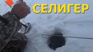 Зимняя рыбалка на Селигере. Жерлицы и поплавочка.