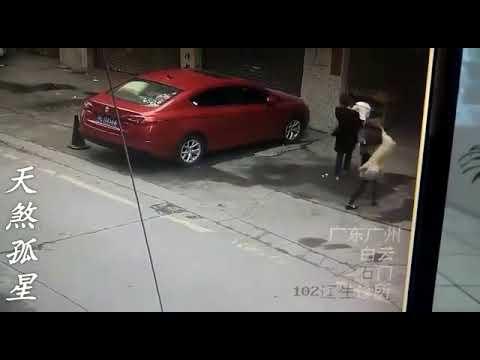 Un perro 'caído del cielo' deja inconsciente a una mujer en plena calle